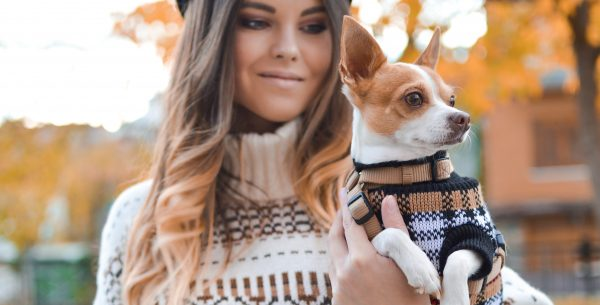 Millennial Pet Ownership on the Rise