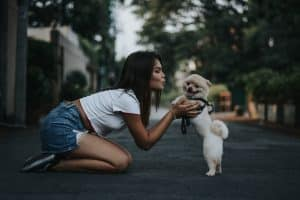 Millennials Boost Spending on Beloved Pets